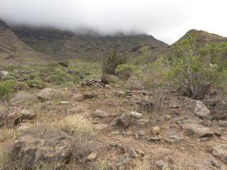 Gran Canaria, Canary Islands, in winter