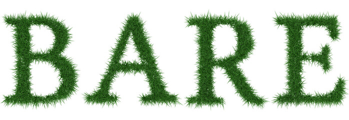 Bare - 3D rendering fresh Grass letters isolated on whhite background.