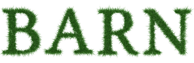 Barn - 3D rendering fresh Grass letters isolated on whhite background.