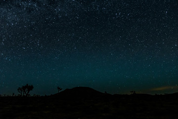 Bright Stars over Joshua Tree Desert