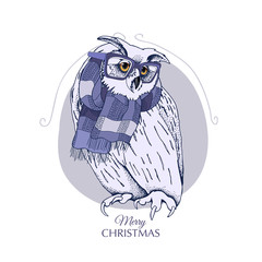 Christmas card. Great Horned Owl in a glasses and in a knitted scarf. Vector illustration.
