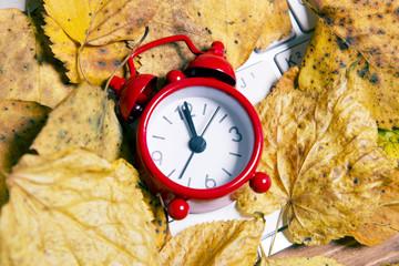 Red alarm clock in fallen leaves