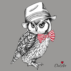 Owl in a Elegant hat, red striped tie on gray background. Vector illustration.