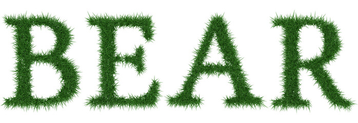 Bear - 3D rendering fresh Grass letters isolated on whhite background.