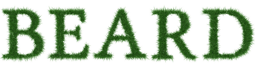 Beard - 3D rendering fresh Grass letters isolated on whhite background.