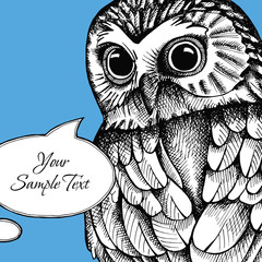 Bright card for your text with image of an owl on blue background. Vector illustration.