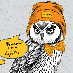 Owl portrait in a Hipster Hat and with tie. Vector illustration.