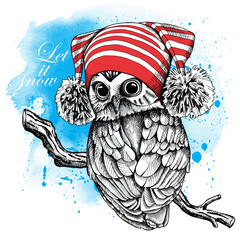 Owl in a red Hat with pom-pom on blue background. Vector illustration.