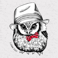 The image of a little owl in Elegant hat and tie. Vector illustration.