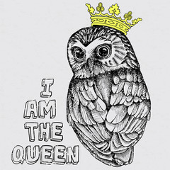 Vintage image of an owl in the crown. Vector illustration.