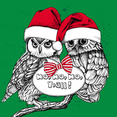 Christmas card. Image of two owls in red Santa hats on a green background. Vector illustration.