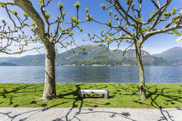 Bench in the gardens of Villa Melzi d'Eril in Bellagio, on the shores of Lake Como. Lombardy, Italy.