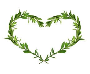 Green grass heart shape composition