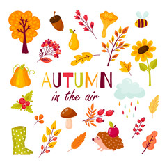 Autumn set of elements in the cartoon style