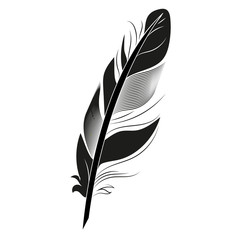 Black feather on white background graphic bird calligraphy vintage pen wing drawing art element vector illustration