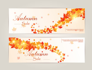 Autumn card and other typography flyer template with lettering. Bright fall leaves. Poster, label, banner. Vector