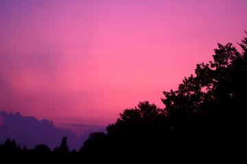 Wall Murals Candy pink Abendrot - Magenta beendet einen schönen Abendhimmel