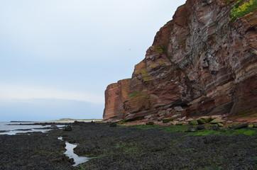 Felswatt an der Steinküste der deutschen Hochsee-Insel Helgoland