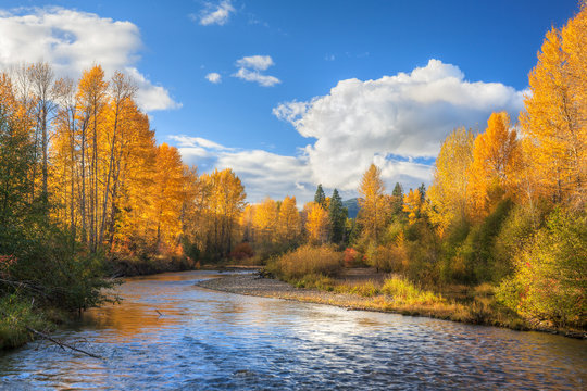 Fall colors on Snoqualmie River