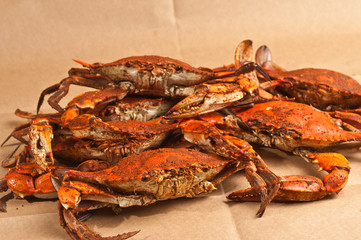 Pile of steamed and seasoned Chesapeake Bay blue claw crabs / on brown paper table cover
