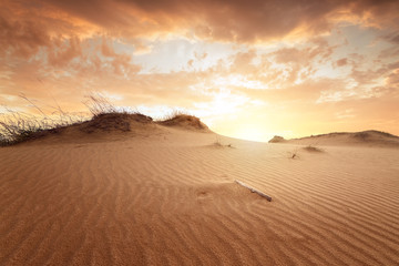 Tuinposter Zandwoestijn sunset in the desert / sand dune bright sunset colorful sky