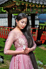 Beautiful girl with long hair, in a pink dress on a background in a Japanese temple in the park.Sakura (cherry) blossom
