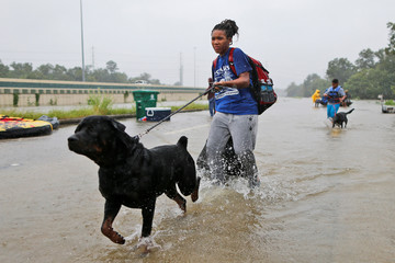 Scales and her dog wade through flood waters from Tropical Storm Harvey in Beaumont Place