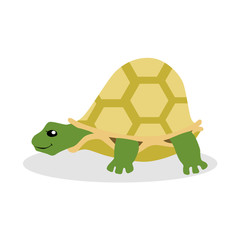 Turtle flat vector illustration