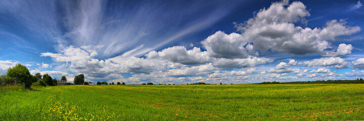 Panorama of the summer field and sky with clouds