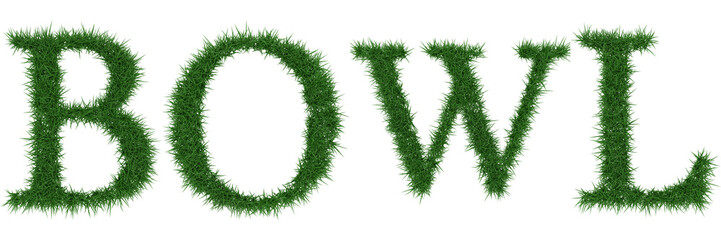 Bowl - 3D rendering fresh Grass letters isolated on whhite background.