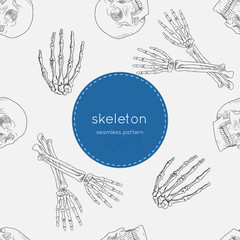 human skeleton, seamless pattern vector.