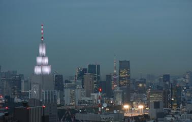 日本の東京都市景観(港区方面などを望む)