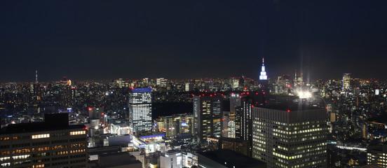 日本の東京都市景観・夜景「墨田区や千代田区、渋谷区、新宿区方面の街並みを望む)