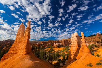 Landscape in Bryce Canyon, with red sandstone columns and beautiful, bright, sky, in autumn