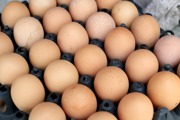 Group of fresh eggs on egg black panel package from a chicken farm in the package retained to sell for cooking at the market.