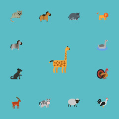 Flat Icons Kitty, Hippopotamus, Horse And Other Vector Elements. Set Of Alive Flat Icons Symbols Also Includes Hippo, Dog, Kitty Objects.
