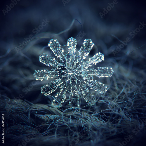 Real snowflake at high magnification  Macro photo of rare