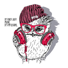 Young Owl in a red glasses and in a hipster knitted hat with Headphones on the neck. Vector illustration.