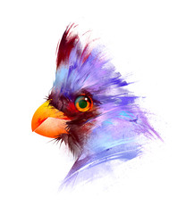 Fototapete - painted bright birds on a white background