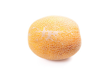 Whole honeydew melon tropical fruit isolated on a white background.