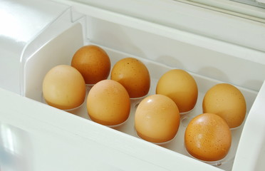 brown egg stored on tray in refrigerator door