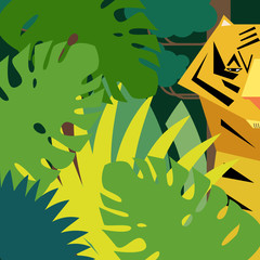 Jungle. Tiger in rainforest. Wildlife.