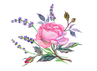 A bouquet of pink roses and lavender. Watercolor drawing on white background isolated with clipping path.