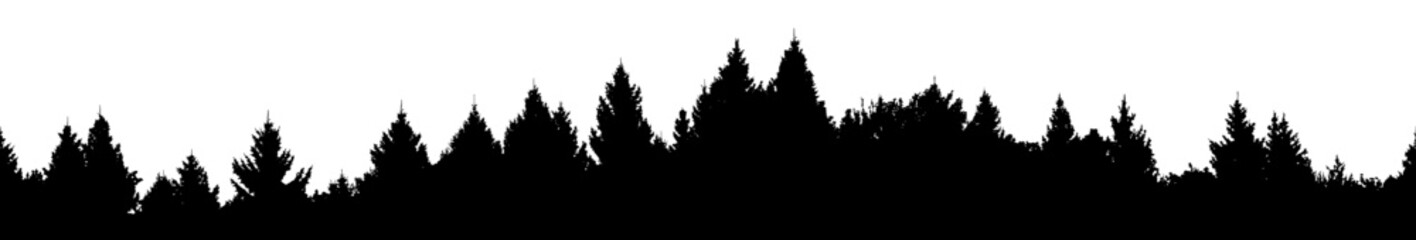 Vector silhouette of detailed and seamless Spruce Forest with hills.