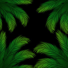 Palm Leaves on Black Background | Holiday Vector Design