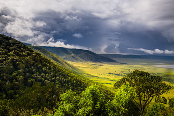 Landscape in The Ngorongoro Crater - Tanzania