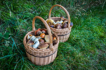 Pair wicker baskets with mushrooms