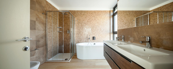 Luxury bathroom in a modern house