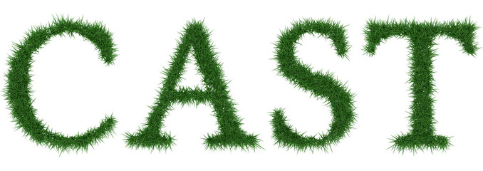 Cast - 3D rendering fresh Grass letters isolated on whhite background.