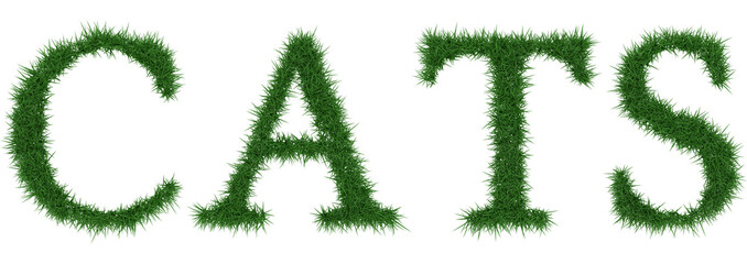 Cats - 3D rendering fresh Grass letters isolated on whhite background.